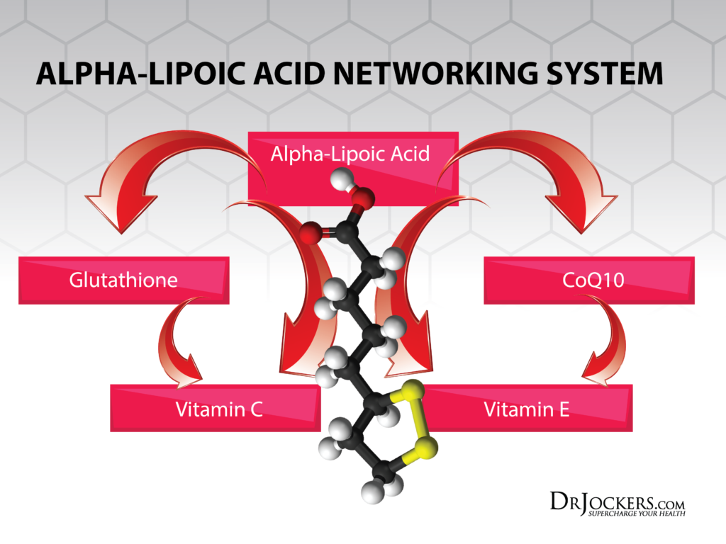 AlphaLipoicAcid_Networking-1024x768