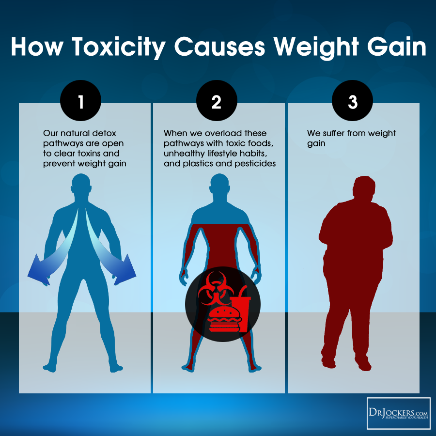 Cleansing_ToxicityWeightGain